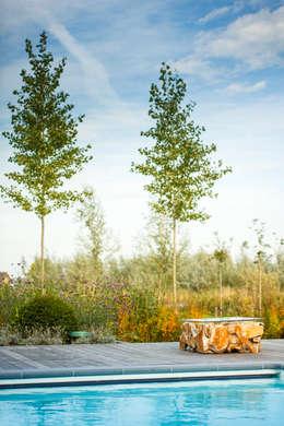 handgemaakte bijzettafel: moderne Tuin door Stam Hoveniers