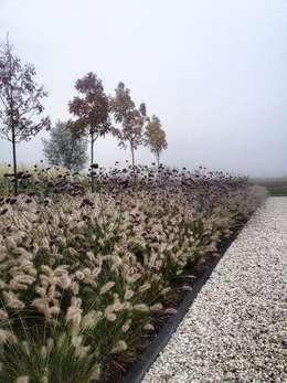 Jardines de estilo rústico por Stam Hoveniers