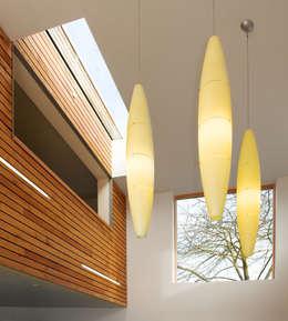 modern Living room by Platform 5 Architects LLP