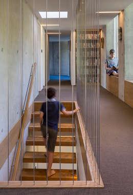 Smerin Architects:  tarz