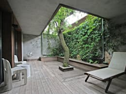 Patios & Decks by BuroBonus