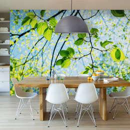 Projekty,  Ściany i podłogi zaprojektowane przez Fotomurales