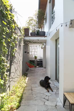 tropical Garden by SALA2 arquitetura e design