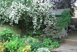 Garden  تنفيذ Fenton Roberts Garden Design