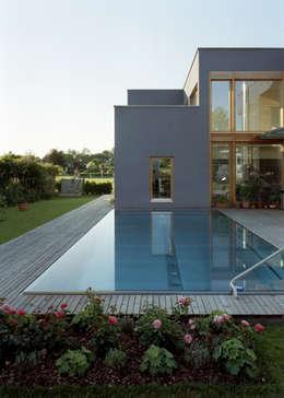 Pool: moderner Pool von architekturbühne