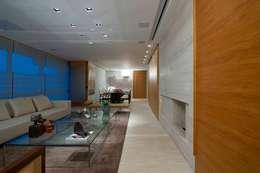 Residência T&L: Salas de estar modernas por Alessandra Contigli Arquitetura e Interiores