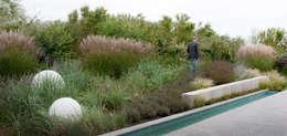 Jardines de estilo moderno por Andrew van Egmond (ontwerp van tuin en landschap)