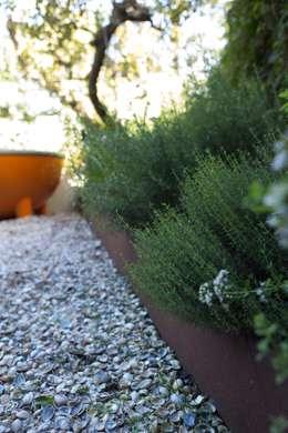modern Garden by Andrew van Egmond (ontwerp van tuin en landschap)