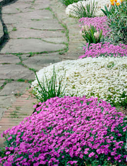 29 meravigliose idee per un giardino piccolo for Foto angoli giardino
