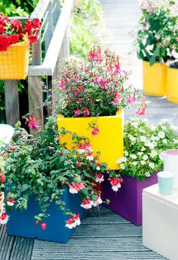 Giardino in stile in stile Eclettico di Pflanzenfreude.de