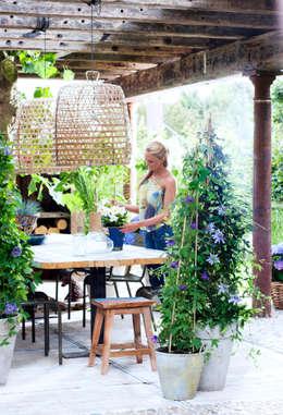 Jardim  por Pflanzenfreude.de
