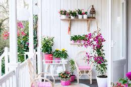 Jardines de estilo moderno por Pflanzenfreude.de
