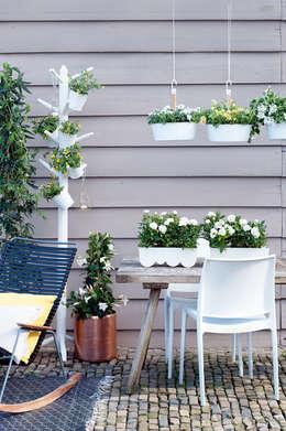 Jardines de estilo  por Pflanzenfreude.de