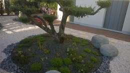 giardini di lucrezia: asyatik tarz tarz Bahçe