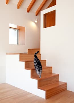 modern Living room by Unico design一級建築士事務所