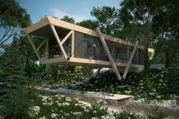 Casas de estilo minimalista por Максим Любецкий