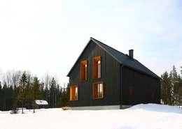 Snegiri Architects: iskandinav tarz tarz Evler