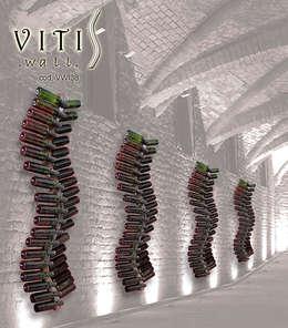 modern Wine cellar by MICHELE MALIN DESIGN