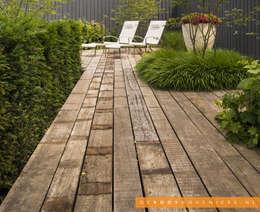 Jardines de estilo moderno por De Rooy Hoveniers