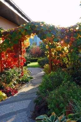 Jesienna szata winorośli japońskiej: styl , w kategorii  zaprojektowany przez Garden Idea - Projektowanie Ogrodów