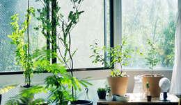 Giardino in stile in stile Eclettico di HANKURA Design