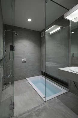 井戸健治建築研究所 / Ido, Kenji Architectural Studio의  화장실