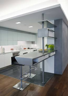 modern Kitchen by Eisner Design