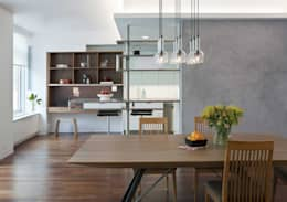 modern Dining room by Eisner Design