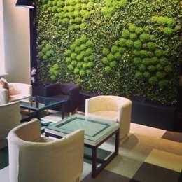 Вертикальное озеленение, монтаж закончен: Озеленение  в . Автор – RaStenia