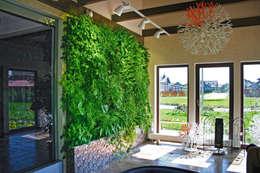 Вертикальный зимний сад в загородном доме: Озеленение  в . Автор – RaStenia