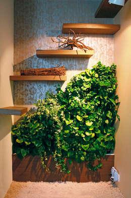 die besten zimmerpflanzen f r deine wohnung. Black Bedroom Furniture Sets. Home Design Ideas