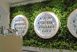 Фитостены в салоне мобильной связи: Озеленение  в . Автор – RaStenia