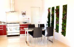 Cocinas de estilo moderno de 3dvegetal