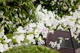classic Garden by Cameron Landscapes and Gardens