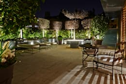 modern Garden by Cameron Landscapes and Gardens
