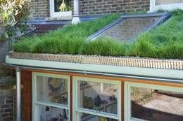 Organic Roofs의  주택
