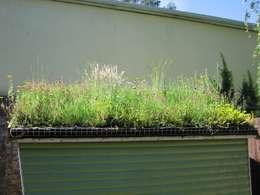 Garajes de estilo rústico por Organic Roofs