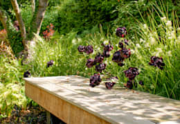 modern Garden by Rosemary Coldstream Garden Design Limited