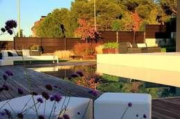 moderne Tuin door La Paisajista - Jardines con Alma