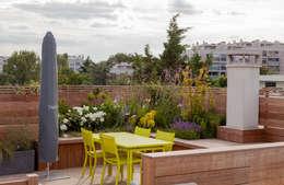 Garches Toit Terrasse: Terrasse de style  par AD Concept Gardens