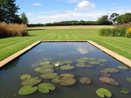 landelijke Tuin door Paul Dracott Garden Design