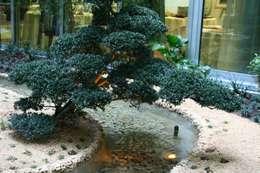 Jardines de estilo  por Giuseppe Maria Padoan bioarchitetto - casarmonia progetti e servizi
