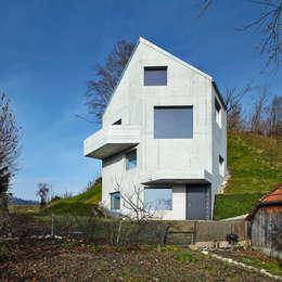 Translocal Architecture의  주택