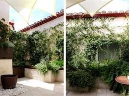 Jardín en Patio con Fuente: Jardines de estilo mediterráneo de La Habitación Verde