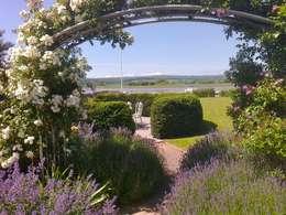 Jardines de estilo moderno por Roger Webster Garden Design