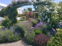 Сады в . Автор – Roger Webster Garden Design