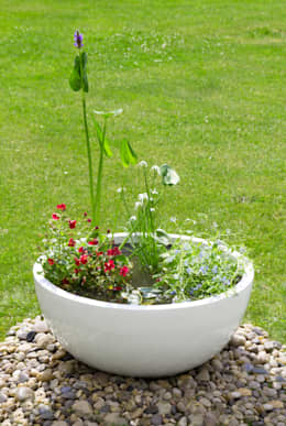 Jardín de estilo  por Primrose