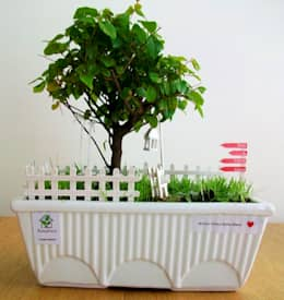 Jardines de estilo minimalista por Bahçehane
