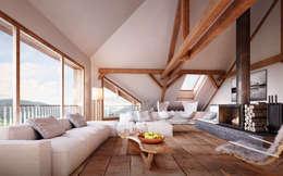 Wohnen im Dachgeschoss: rustikale Wohnzimmer von von Mann Architektur GmbH