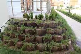 asis mimarlık peyzaj inşaat a.ş. – Asis Mimarlik: modern tarz Bahçe